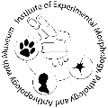 logo IEMPAM